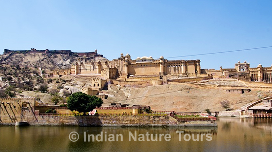 amber_fort_jaipur-small